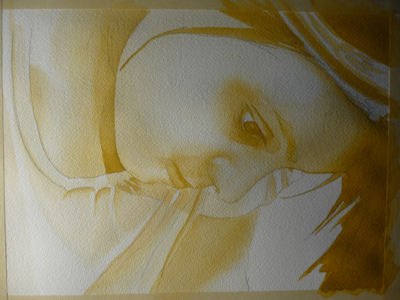 watercolor portrait painting lesson, yellow layer