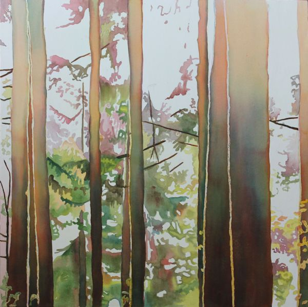 layering many watercolor washes to paint the tree trunks