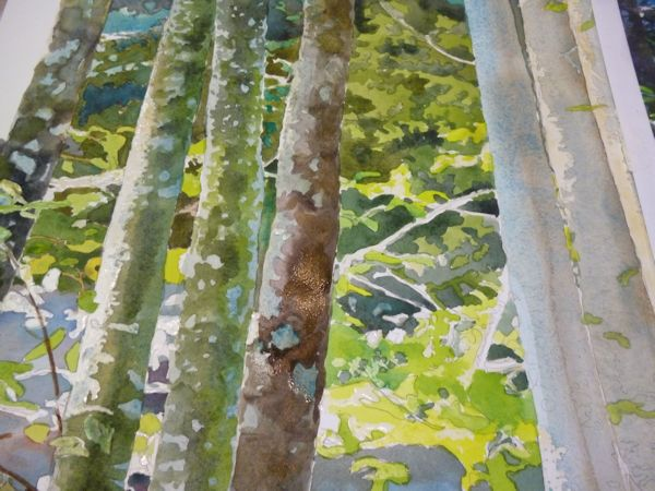 rendering the tree bark textures by scrumbling the paint wet on dry.