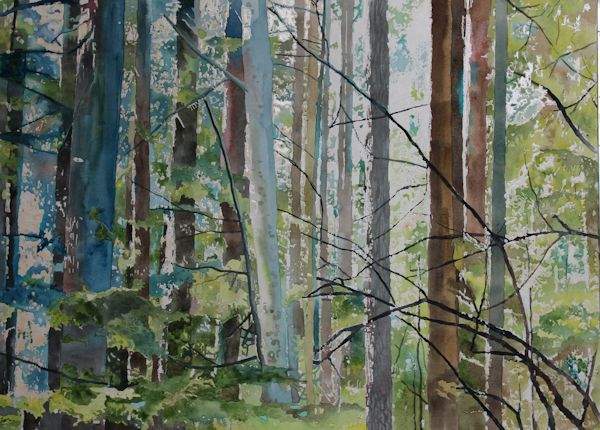 watercolor forest painting before splashing ot with gouache and watercolor