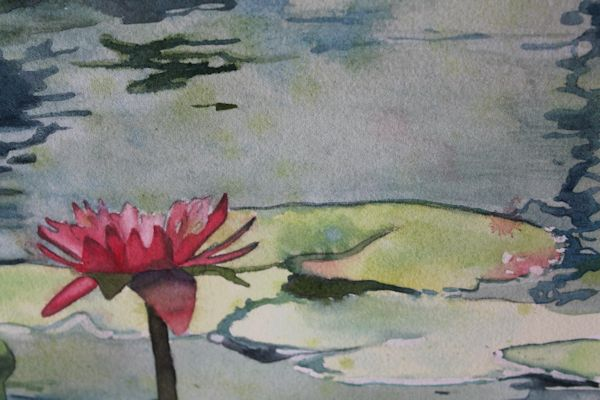 details of watercolor lily pads painting by Canadian artist Sandrine Pelissier
