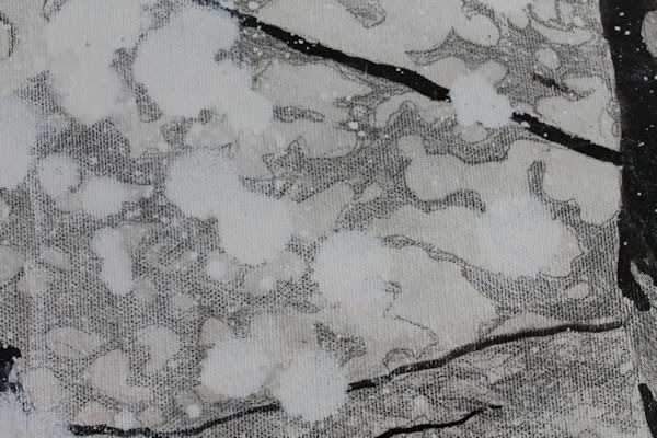 detail of graphite and India ink painting by North Vancouver artist Sandrine Pelissier