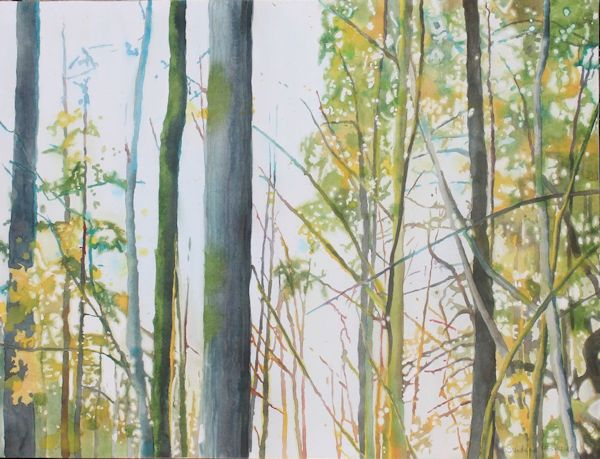 painting a forest with watercolor