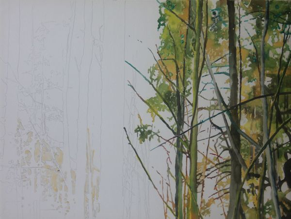 painting a forest with watercolors