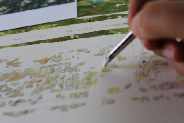 masking fluid on areas that have been previously painted with watercolor