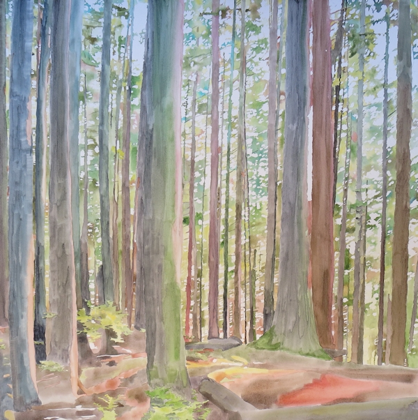 watercolor forest painting before adding zentangles