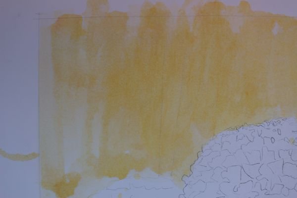 painting a loose watercolor background and rough outline of the flowers