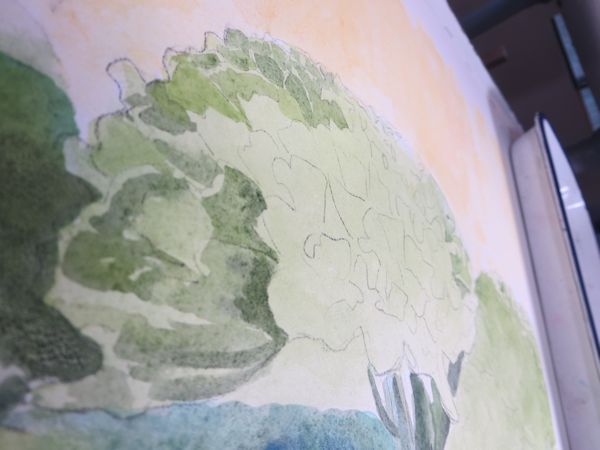 painting the flowers with more defined shapes by layering watercolor washes