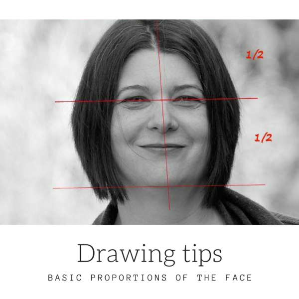 Drawing tips basic proportions of the face