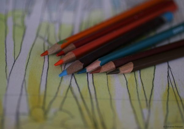 try on colors with colored pencils