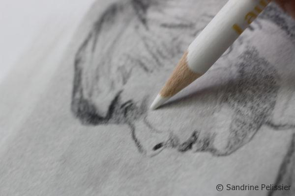 adding highlights with a white colored pencil