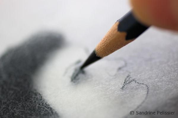 With a sharpened watercolor pencil, you can easily draw details like the features on a portrait.