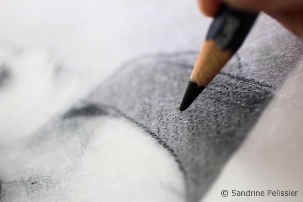 By varying the pressure on the pencils, you can get different tones of black or color.